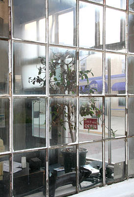 Trinidad Colorado Photograph - Corner Windows And Plant by Peter Veljkovich