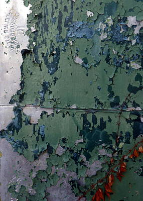 Aged Photograph - Corners by Carla Parris