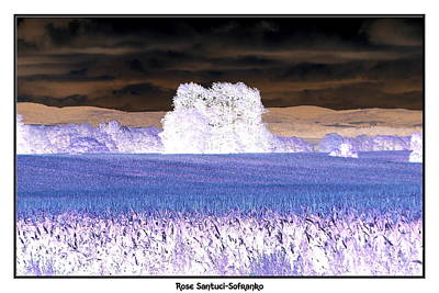 Negative Effect Digital Art - Cornfields And Clouds Inverted Negative Effect by Rose Santuci-Sofranko