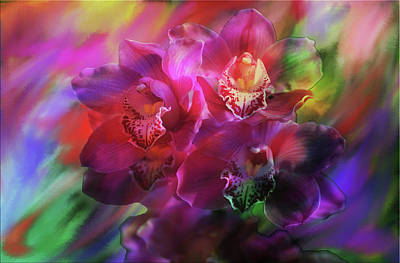 Coronation Orchids  Art Print