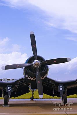 Photograph - Corsair Nose by Tim Mulina