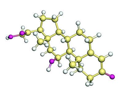 Corticosterone Hormone Molecule Art Print by Dr Tim Evans
