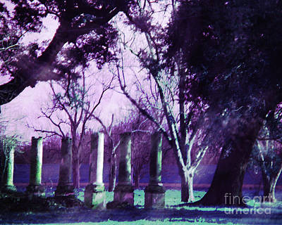 Digital Art - Cottage Plantation Ruins by Lizi Beard-Ward