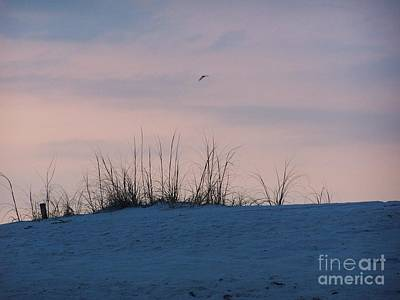 Art Print featuring the photograph Cotton Candy Sky by Jeanne Forsythe