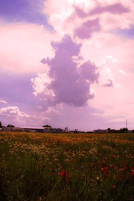 Cotton County Landscape Art Print by Toni Hopper