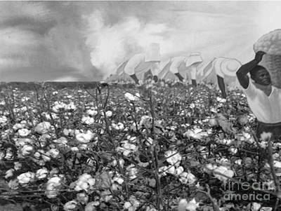 Digital Art - Cotton Field by Belinda Threeths