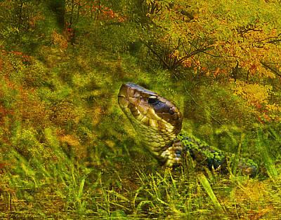 J Larry Walker Digital Art Photograph - Cottonmouth - Bad Boy by J Larry Walker