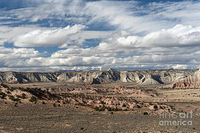 Photograph - Cottonwood Canyon Badlands by Sandra Bronstein