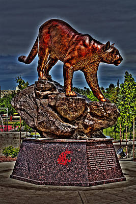 Cougar Pride Art Print by David Patterson