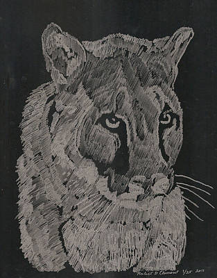 Cougar Art Print by Robert Clement