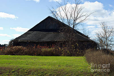 Photograph - Country Barn by Ms Judi