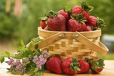 Photograph - Country Basket Strawberries by Trudy Wilkerson
