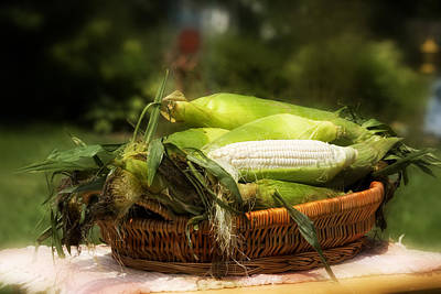 Photograph - Country Corn by Trudy Wilkerson