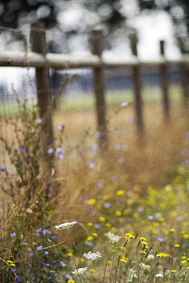Gate Photograph - Country Fence by Rebecca Cozart