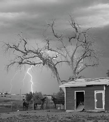 Photograph - Country Horses Lightning Storm Ne Boulder County Co 66v Bw by James BO Insogna