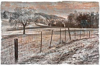 Country Lane Art Print by Debra and Dave Vanderlaan