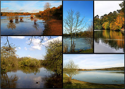 Photograph - Country Parks Collage by Chris Day