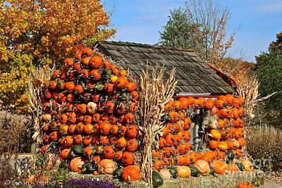 Photograph - Country Pumpkin Shack by Susan Herber