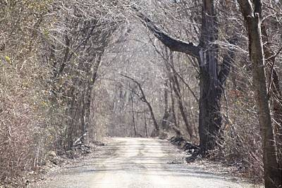 Photograph - Country Road by Donna G Smith