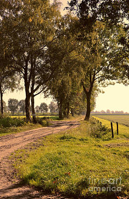 Briex Photograph - Country Road In North Brabant by Nop Briex