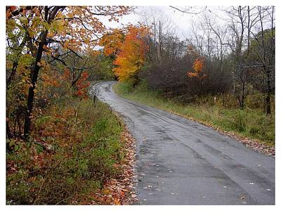 Photograph - Country Road In October by Frank Wickham