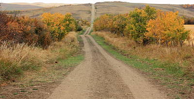 Ranch Photograph - Country Road To Nowhere by Jim Sauchyn