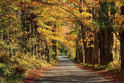 Country Roads In Autumn Art Print