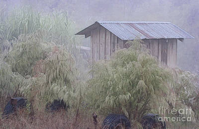 Photograph - Country Shed In The Mist by Judi Bagwell