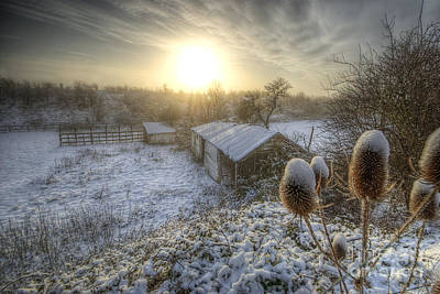 Photograph - Country Snow And Sunrise by Yhun Suarez