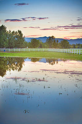 Lovely Lavender - Country Sunset Reflections by James BO Insogna