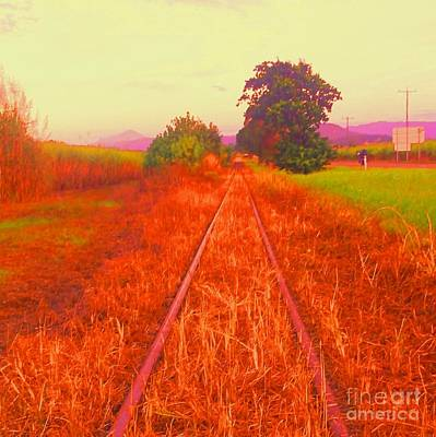 Country Tracks Art Print by David Peters