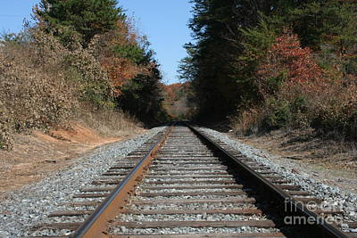 Photograph - Country Tracks by Michael Waters