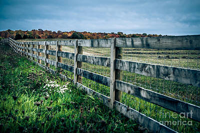 Sunday Drive Photograph - Country Walk by Christina Klausen