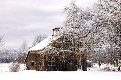 Country Winter Art Print by Monica Lewis