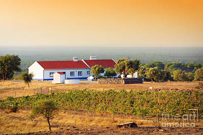 Alentejo Photograph - Countryside House by Carlos Caetano
