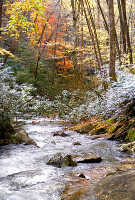 Photograph - Courthouse River In The Fall by Duane McCullough