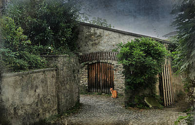 Entrance Door Mixed Media - Courtyard by Maria Dryfhout