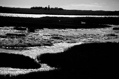 Photograph - Covering The Marshes by Jez C Self