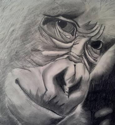 Soulful Eyes Drawing - Covet by Steve Dreitz