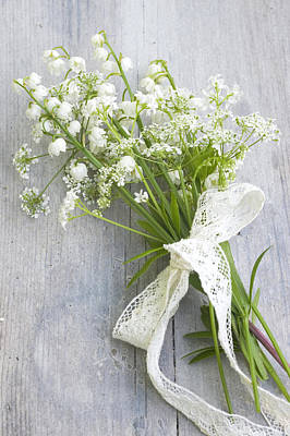 Cow Parsley Wall Art - Photograph - Cow Parsley (anthriscus Sylvestris), Lily Of The Valley (convallaria) And Sweet Woodruff (gallium Odorata) by Juliette Wade