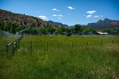 Photograph - Cow Pasture Near Zion by Julie Niemela