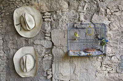 Art Print featuring the photograph Cowboy Hats And Parakeets by Craig Lovell
