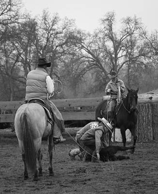 Photograph - Cowboy Teamropin by Diane Bohna