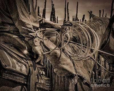 Cowboy's Coils Art Print by Megan Chambers