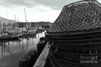 Crab Basket Photograph - Crab Traps by Darcy Michaelchuk