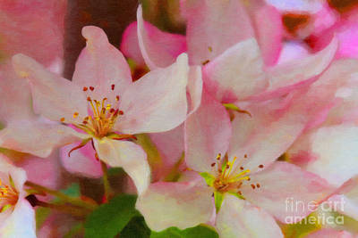 Photograph - Crabapple Floral Paint by Donna Munro