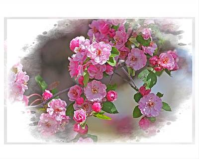 Art Print featuring the photograph Crabapple Plethora by Judy Deist