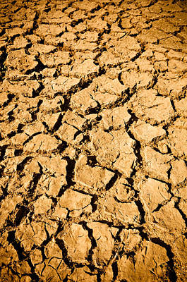 Clay Relief Photograph - Cracked Mud Arid Ground by Brandon Bourdages