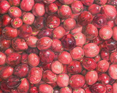 Painting - Cranberries by Dominic White