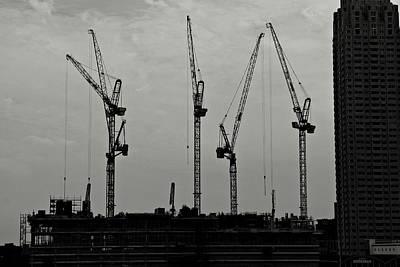 Photograph - Crane Ballet by Dean Harte